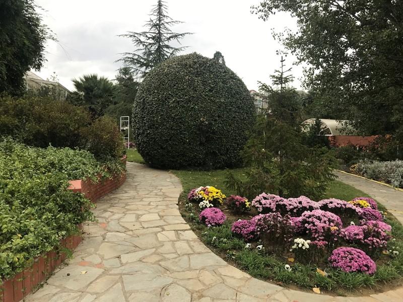 Ο βοτανικός κήπος – όαση στην καρδιά του μπετόν στη Θεσσαλονίκη (ΦΩΤΟ), φωτογραφία-18