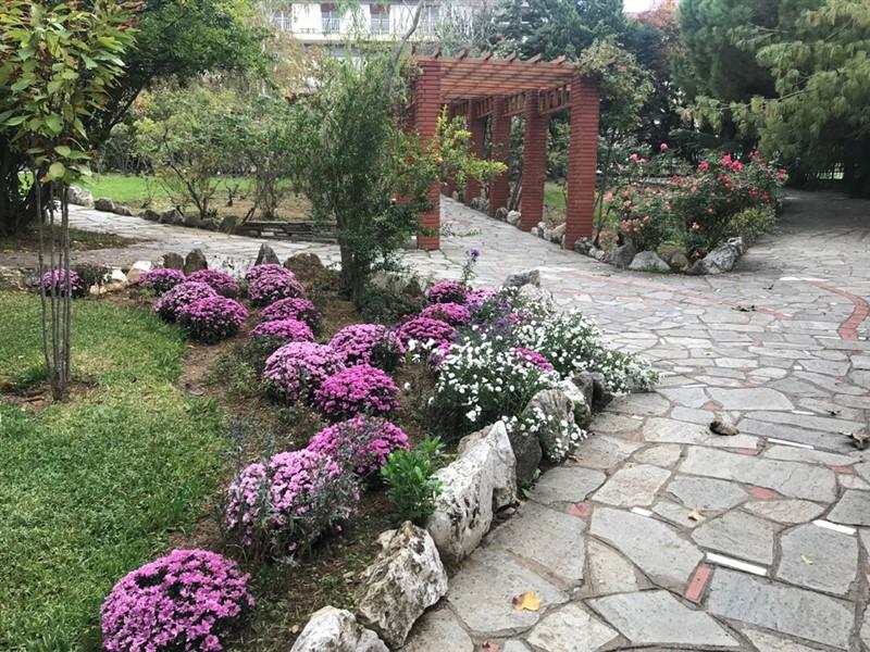 Ο βοτανικός κήπος – όαση στην καρδιά του μπετόν στη Θεσσαλονίκη (ΦΩΤΟ), φωτογραφία-15