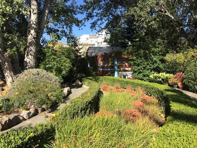 Ο βοτανικός κήπος – όαση στην καρδιά του μπετόν στη Θεσσαλονίκη (ΦΩΤΟ), φωτογραφία-14
