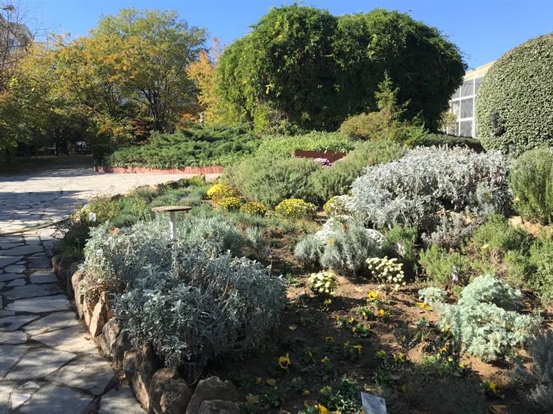 Ο βοτανικός κήπος – όαση στην καρδιά του μπετόν στη Θεσσαλονίκη (ΦΩΤΟ), φωτογραφία-13