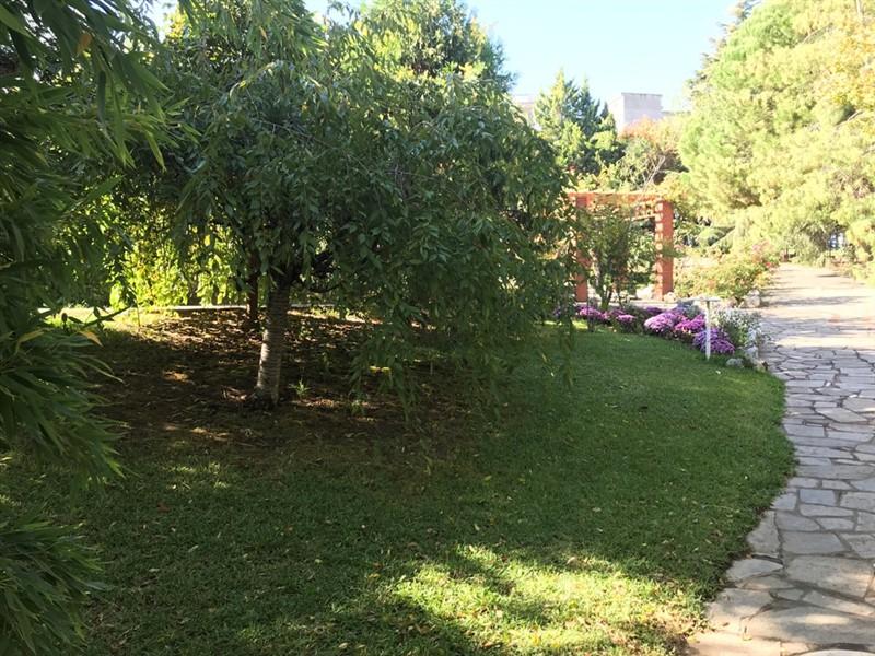 Ο βοτανικός κήπος – όαση στην καρδιά του μπετόν στη Θεσσαλονίκη (ΦΩΤΟ), φωτογραφία-8