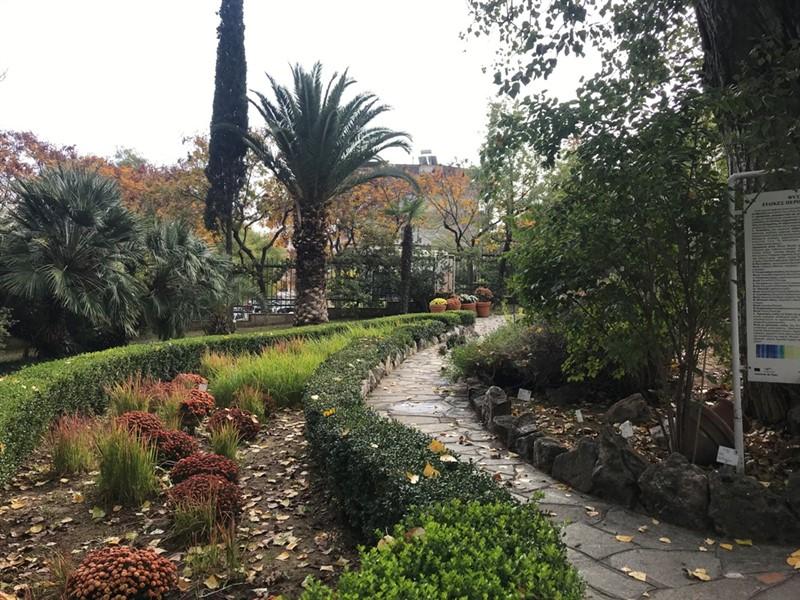Ο βοτανικός κήπος – όαση στην καρδιά του μπετόν στη Θεσσαλονίκη (ΦΩΤΟ), φωτογραφία-7