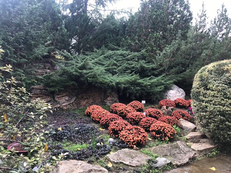 Ο βοτανικός κήπος – όαση στην καρδιά του μπετόν στη Θεσσαλονίκη (ΦΩΤΟ), φωτογραφία-3